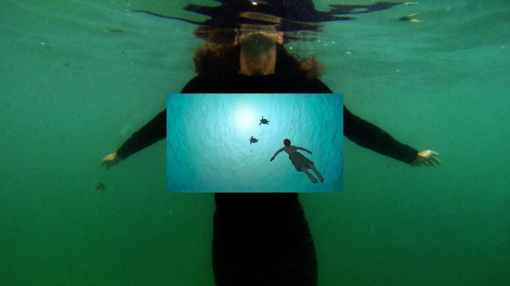 Sipo Phantasma (Koldo Almandoz) - La tortuga roja (Michael Dudok de Wit)